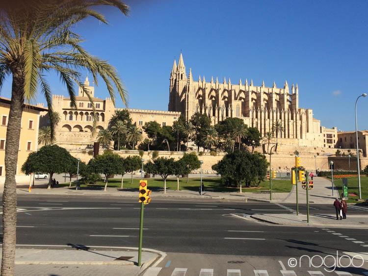 Glutenfrei Reisen Mallorca Kathedrale